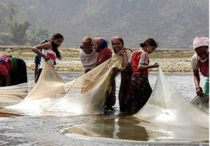 Human communities in the Himalayas depend on rivers and lakes for clean water and the harvest of high-protein fish. In many places, the welfare of otters depends on the willingness of local people to coexist with otters.